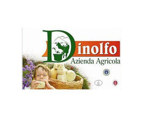 dinolfo-logo
